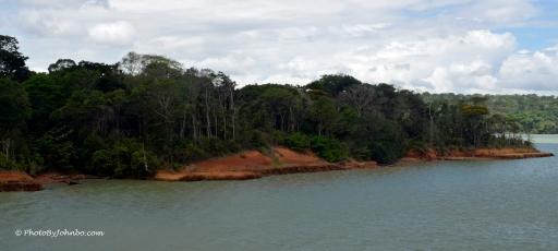 Gatun Lake Island