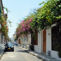 Cartagena - Romancing the Stone Wall