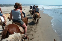 We chose to horseback ride along the beach.