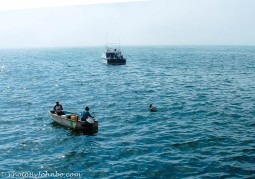 Fishermen plying their trade.