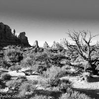 Southwest Landscapes in Black-and-White