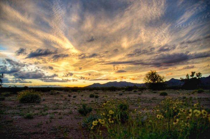 Buckeye_Sunset_SS