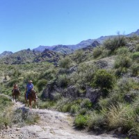 Arizona Springtime - A Weekend in the Shadow of the Superstition Mountains