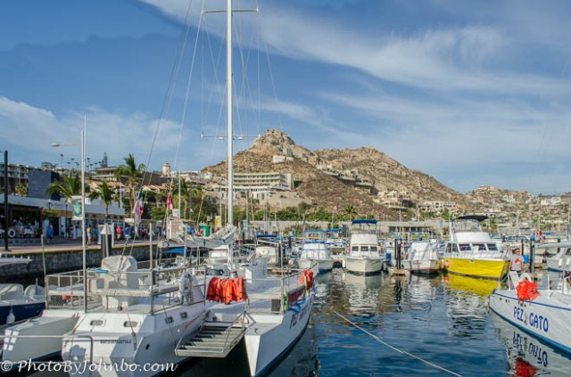 A view of the marina and resorts on the hillside from our tour boat.