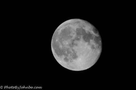 Super Moon Monochrome-1