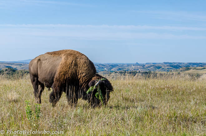 TR National Park-8