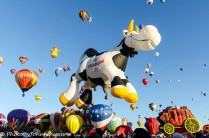 Balloon Fiesta-7