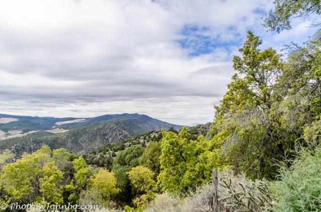 Carlito Springs-9