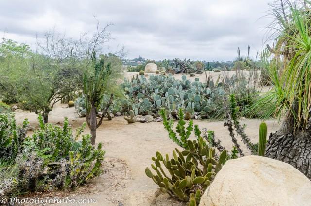 Balboa Park Gardens-3