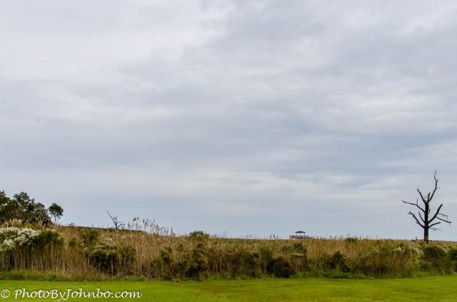 Bodie island-2