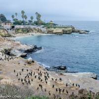 La Jolla Cove - San Diego's Most Photographed Beach