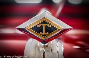 Diamond Rio hood ornament