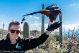 Raptor Free Flight Demonstration.