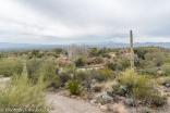 Desert Botanical Garden.