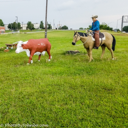 Cattle Drive-1