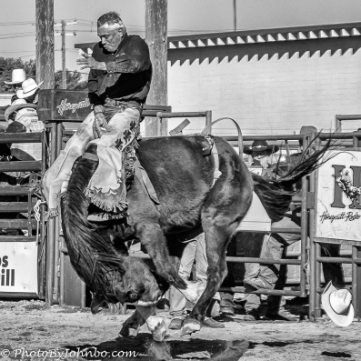Bronc Buster-1