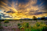 Buckeye Sunsets-1