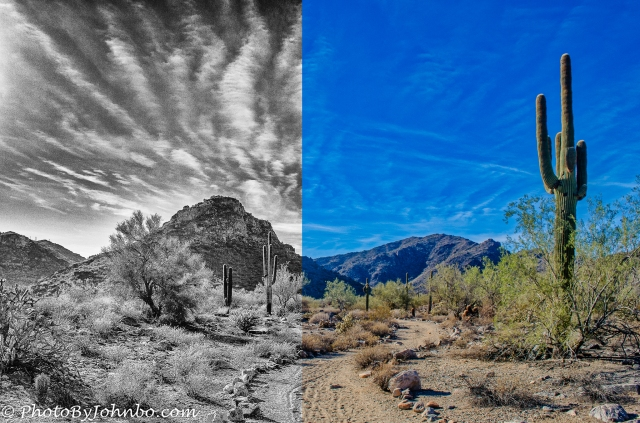 Ford Canyon-2.jpg