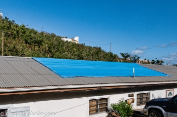 Blue Roof-4