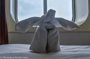 Every night a new towel animal surprised us