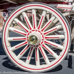 Clydesdales-4