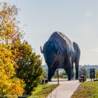 World's Largest Buffalo - a 60-ton Giant in North Dakota