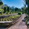 duke gardens-2