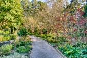 duke gardens-6