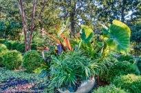 duke gardens-9