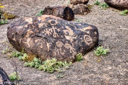 Painted Rock Petroglyphs-8