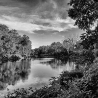 Lens-Artists Photo Challenge - Black and White